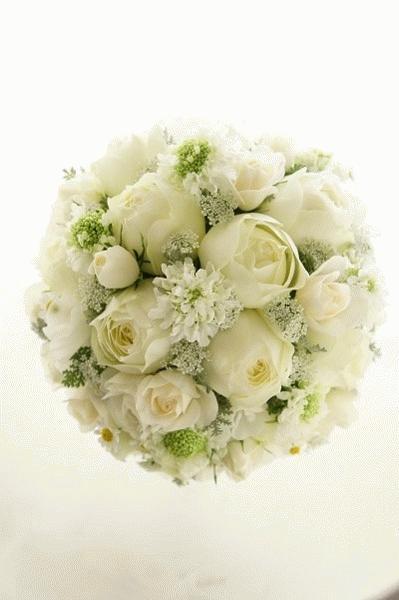 ホワイトラウンドNo.9~春の花を散らして